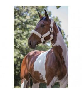 Licol full mouton synthétique rouge et blanc - shetland & poney - La halle aux minis