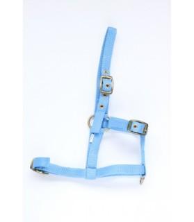 Licol mini-shet en nylon - bleu ciel - La halle aux minis