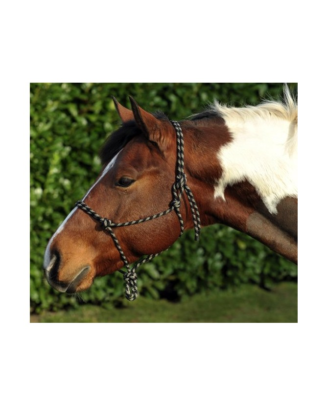 1398_licol-ethologique-corde_poney-lahalleauxminis