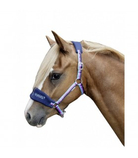 9224_licol_funny_horse_shetland_lahalleauxminis
