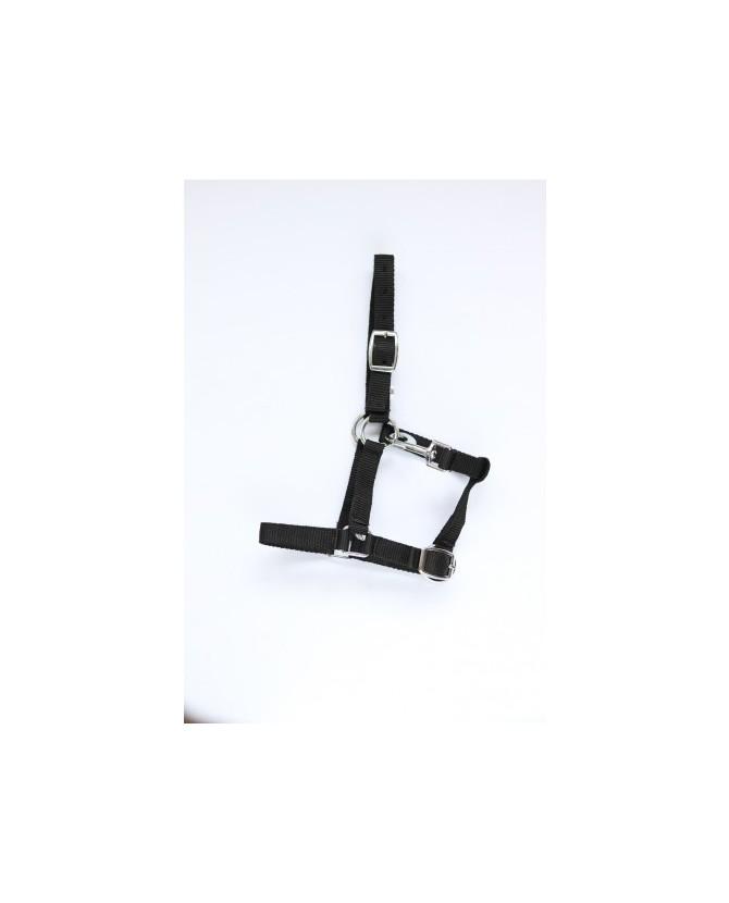 Licol nylon noir- cheval miniature - la halle aux minis